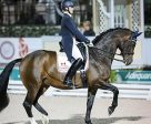 Megan Lane and Caravella won the FEI Grand Prix Freestyle CDIO 3* at the Adequan® Global Dressage Festival. Photo by Susan J Stickle