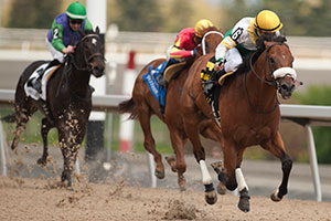 Eurico Da Silva guides Yorkton to victory in the $125,000 Queenston Stakes at Woodbine. Photo by Michael Burns