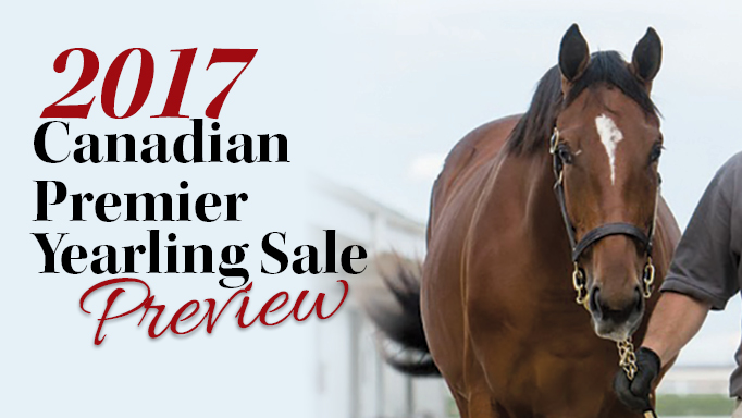 Thumbnail for 2017 Canadian Premier Yearling Sale Preview