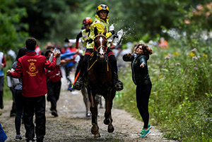 Germany's Sabrina Arnold and Tarzibus on their way individual gold at the FEI European Endurance Championships in the UNESCO World Heritage site, Sonian Forest in the heart of the Belgian capital Brussels. Photo by FEI/Martin Dokoupil