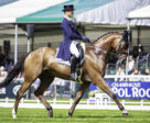 Double olympic champion and FEI Classics™ series leader Michael Jung (GER) leads after the first day of dressage with La Biosthetique Sam FBW at the Land Rover Burghley Horse Trials, sixth and final leg of the FEI Classics™ series. Photo by FEI/Libby Law