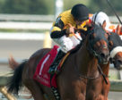 Untamed Domain won the Grade 2 Summer Stakes at Woodbine. Photo by Michael Burns