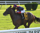 White Flag winning the Allied Forces Stakes on September 10 at Belmont Park. Photo by Joel Abozzetta/NYRA Photo