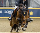 Nicole Walker won the Uplands U25 Jumping National Championship.